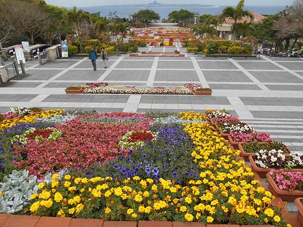 花いっぱいの海洋博公園