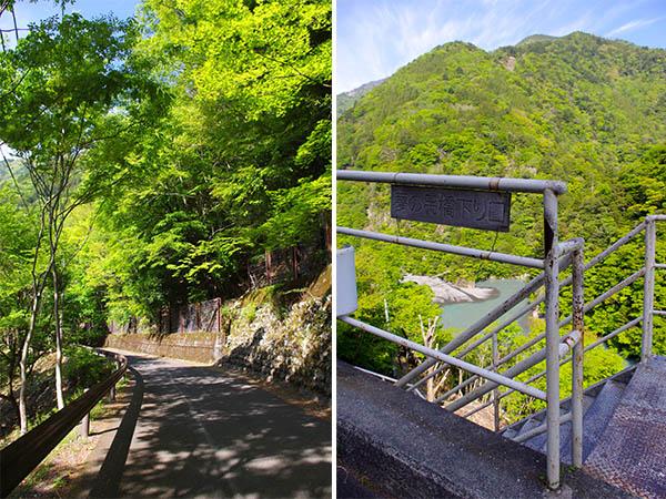 左/新緑の影が落ちる道 右/この階段を下っていく