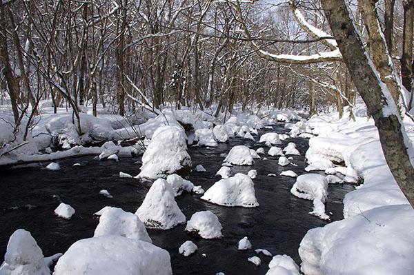 「三乱の流れ」は3つの渓流が合流する地点。冬は水量が少ない