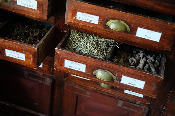アーユルヴェーダの薬草は乾かしたり、煮たりと用途によって使いわける