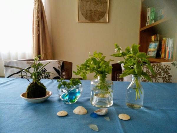 テーブルを彩る花たち