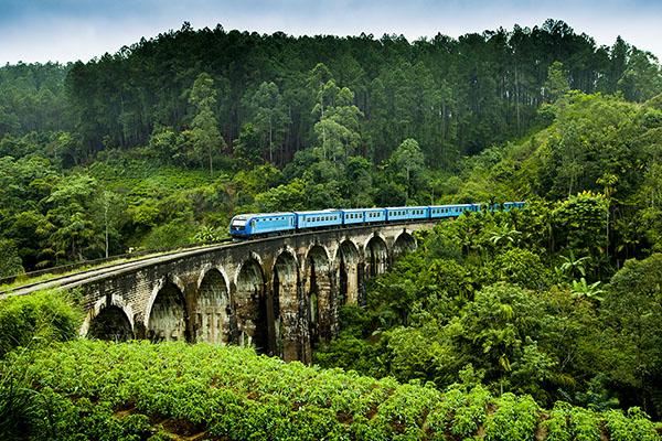 スリランカの鉄道は植民地時代、紅茶を運ぶために造られた。(ナインアーチブリッジ/スリランカ観光局提供)