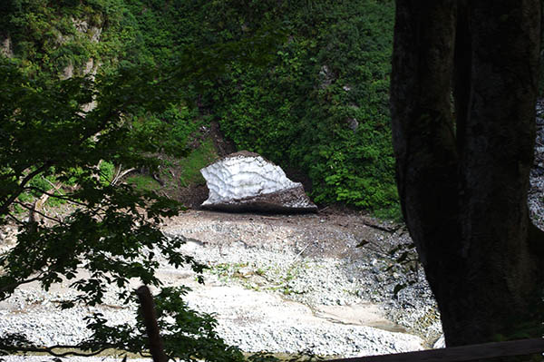 岩の上に残っている万年雪