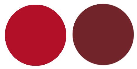 50代メイクにおすすめの赤色