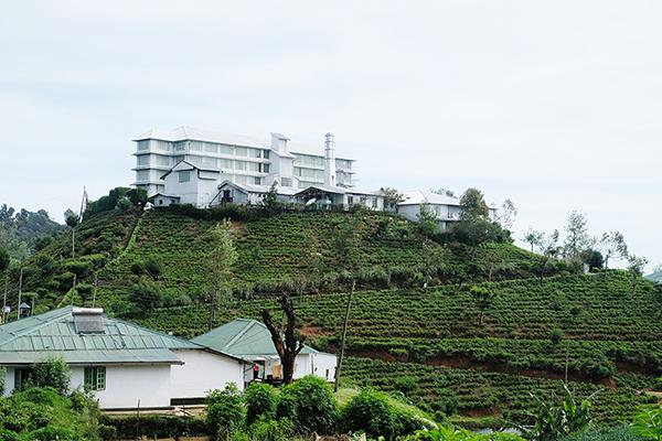 外観はまさに紅茶工場