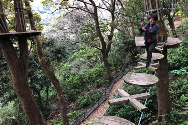 森の空中散歩が体験できる