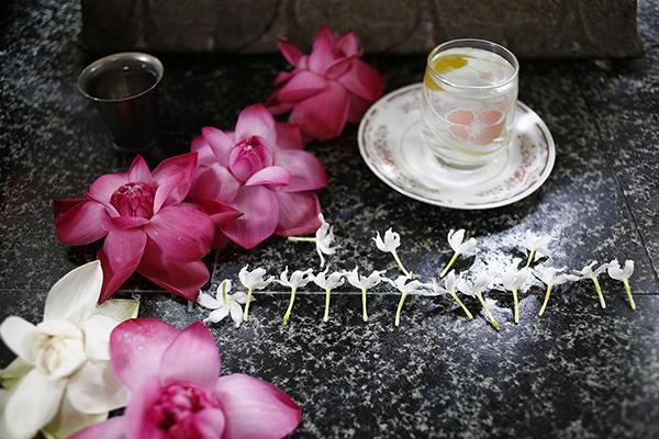 ブッダに捧げられるハスの花とスリランカジャスミン