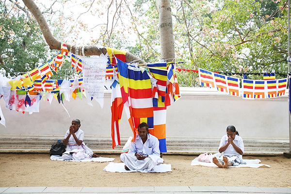 ブッダが悟りを開いた菩提樹の分け木に祈る人々