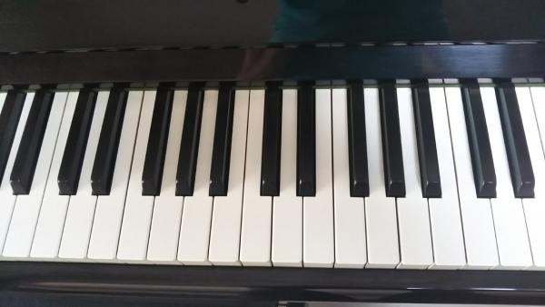 鍵盤に触れるようになった