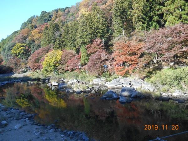 巴川に映える香嵐渓の紅葉