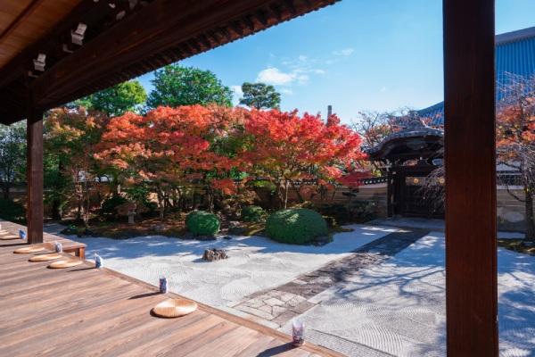 □江戸琳派の趣を感じる庭