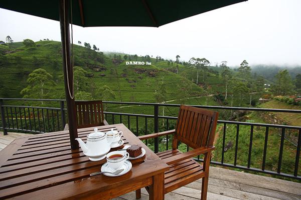 スリランカ紅茶の産地