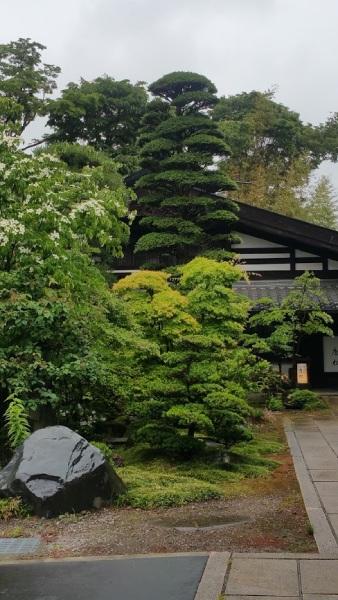 店先の雨に濡れた庭石