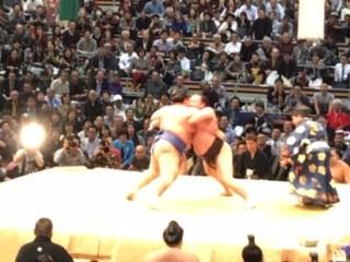 大相撲取り組み