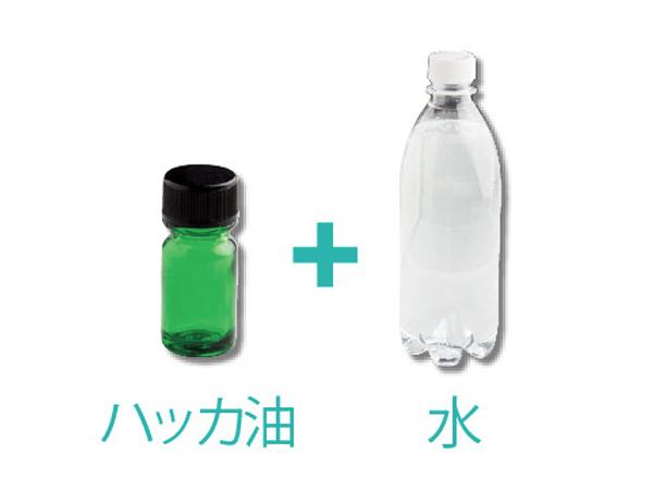 お口スッキリ 胃もたれ予防に「ハッカ水」の材料