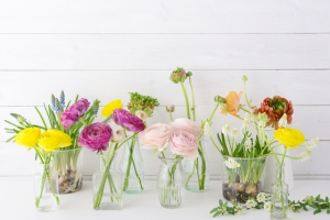切り花の寿命を長持ちさせる方法は?