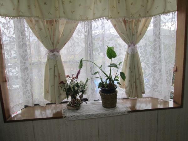 退院してからは我が家の窓を眺めながら、我が家のよさを再確認して静養していた